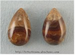 Biggs Canyon Picture Jasper Pair